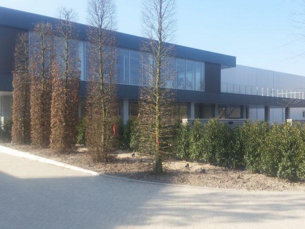 Renovatie bedrijfshal met nieuwe kantoorruimte